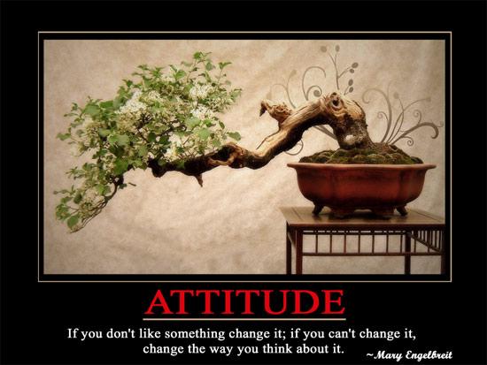 Wallpaper Attitude
