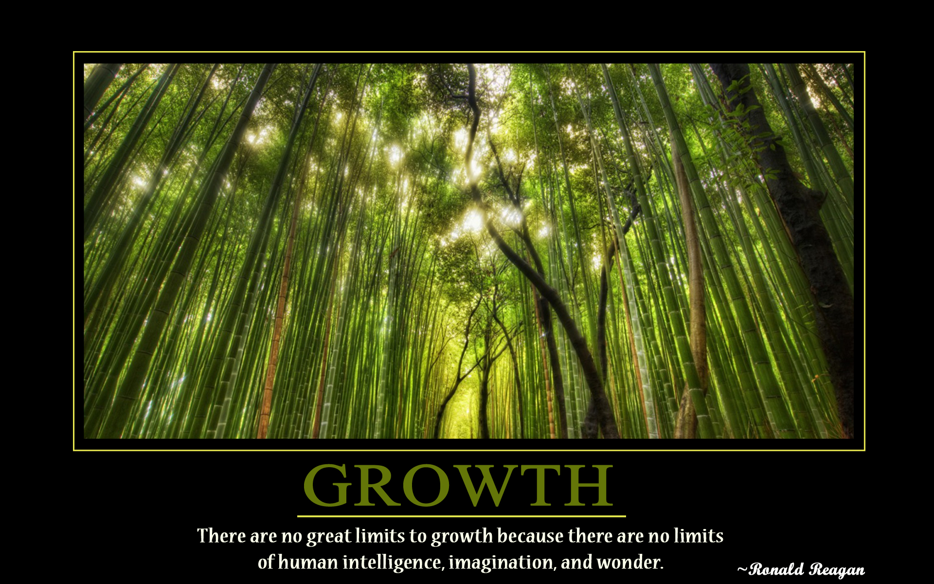 Motivational Growth